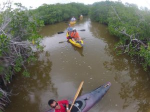 Eco Hotel Restaurant Maya Luna Mahahual activities. Kayak tour Xcalak