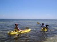 Eco Hotel Restaurant Maya Luna Mahahual. Pet-friendly Kayaking with your best friend