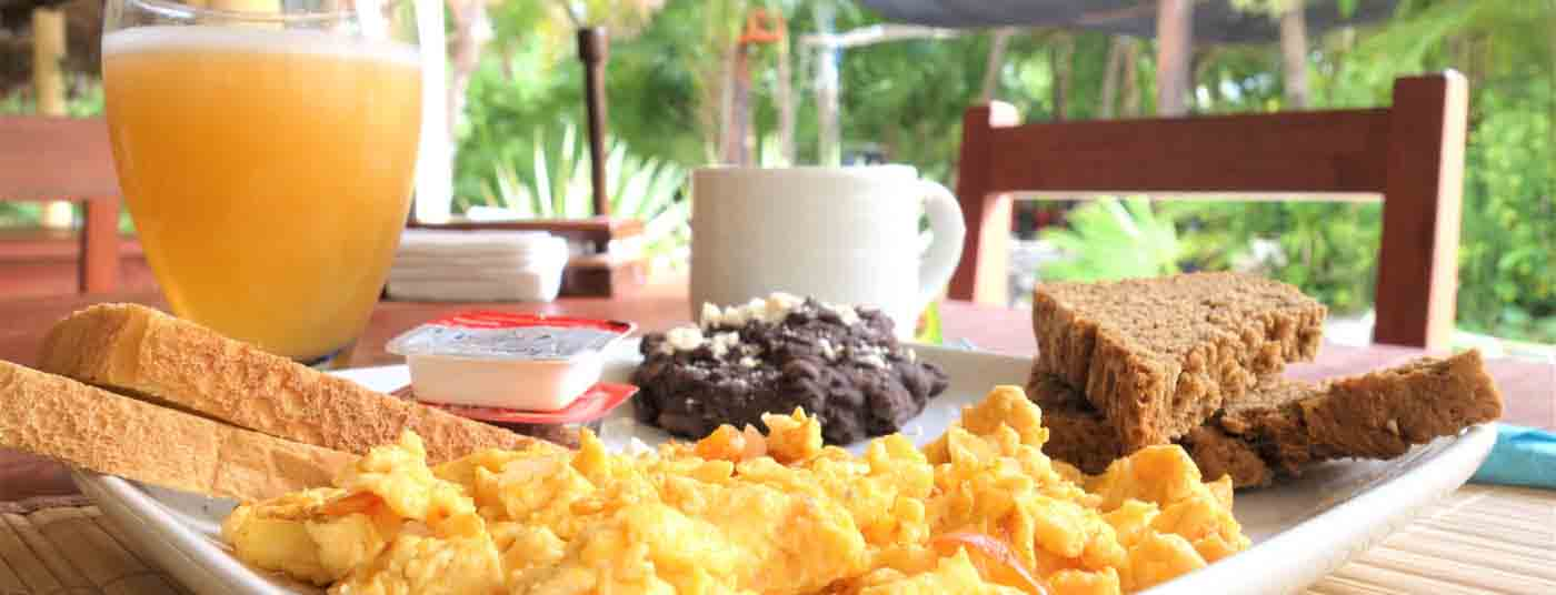 <strong>Tropical Breakfast Included</strong>